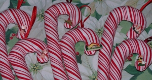 candy-cane-close-up